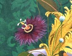 Bouquet d'Acanthes